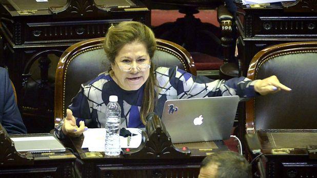 La diputada Graciela Camaño (Gustavo Gavotti)