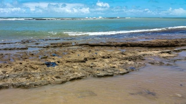 El estado de la playa de Pontal de Coruripe en el municipio de Coruripe, estado de Alagoas (AFP)