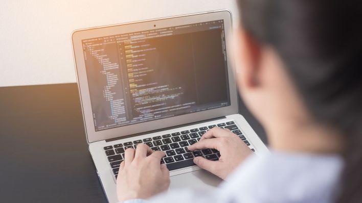 Diferentes opciones para aprender programación online y sin costo (Shutterstock)