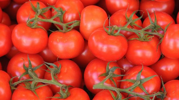 El jugo de tomate, de fuerteumami, abunda en los aviones porqueel ruidoestimula eldeseo. (iStock)