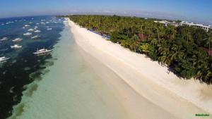 Alona Beach Tawala Bohol Philippines 011