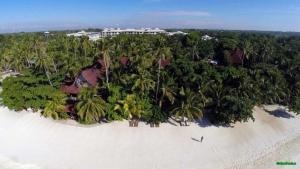 Alona Beach Tawala Bohol Philippines 020