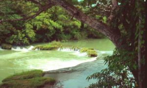 Loboc River Cruise Bohol-018