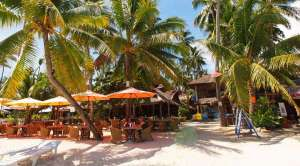 Best Rates At The Alona Vida Beach Resort In Alona Beach Panglao Bohol 003