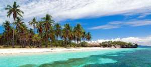 Pamilacan Island Paradise Hotel Philippines
