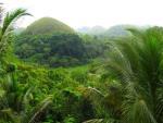 Chocolate Hills In Carmen Bohol (5)