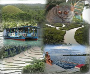 Bohol New Photos