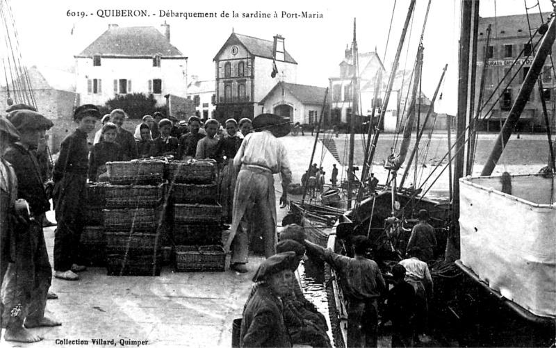 Port de Quiberon (Bretagne).