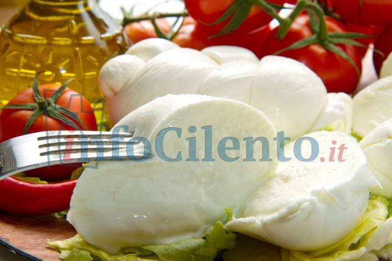 Mozzarella made in Puglia? Franco Alfieri dice no