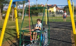 giostra_disabili1