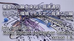 Mobile Network Aggregation Gateway