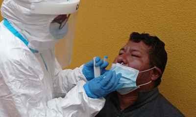 pruebas de antígeno nasal