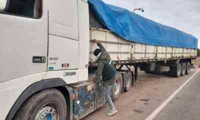 Camiones_con_soya