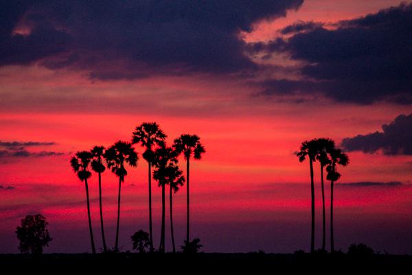 Saat cuaca cerah, pemandangan sunset biasanya memiliki kontras yang tinggi