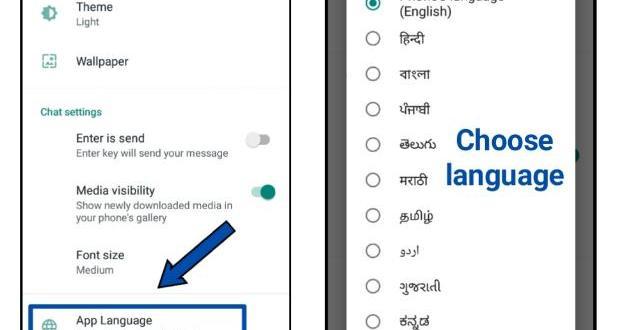 How to change WhatsApp language