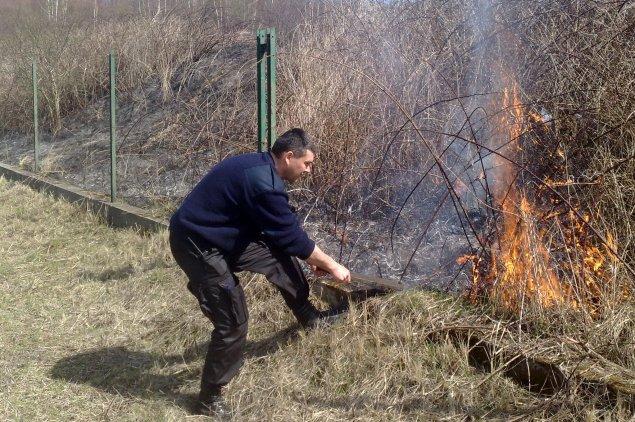 Strażnicy miejscy gaszą płonące łąki. Fot. Straż Miejska Miasta Krakowa