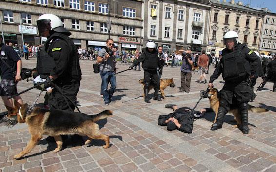 Małopolska Policja będzie miała nowe psy wspierające policjantów w pełnieniu służby