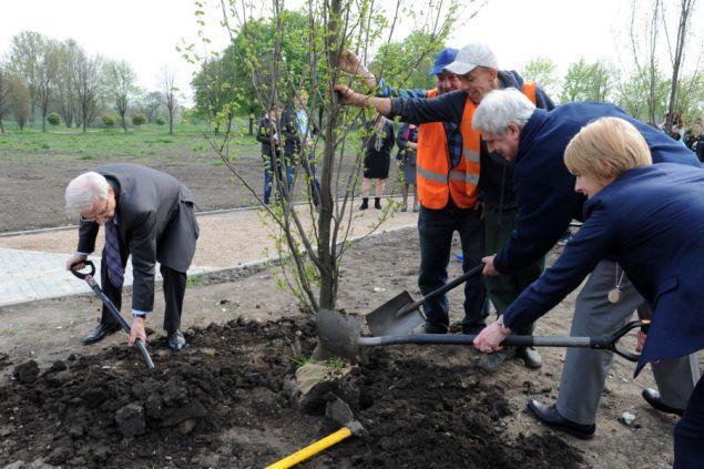 Sadzenie Drzew. Fot. Wiesław Majka / UMK