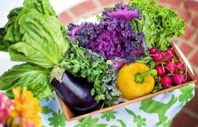 verduras vegetales