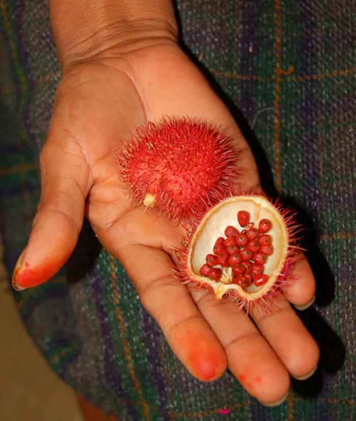 fruits-legumes-etranges-11