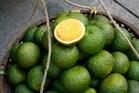 8-deguster-une-orange-verte