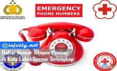Permalink to Daftar Nomor Telepon Penting di Kota Lubuklinggau Terlengkap