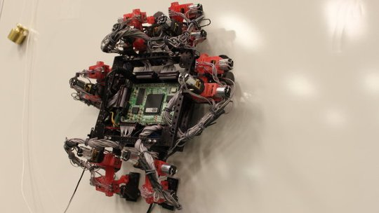 Abigaille_wall-crawler_robot_large