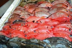 Colorful fresh fish at the Majuro fish market. Photo: Karen Earnshaw