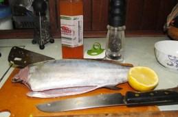 Ready to cook the fish. Photo: Karen Earnshaw