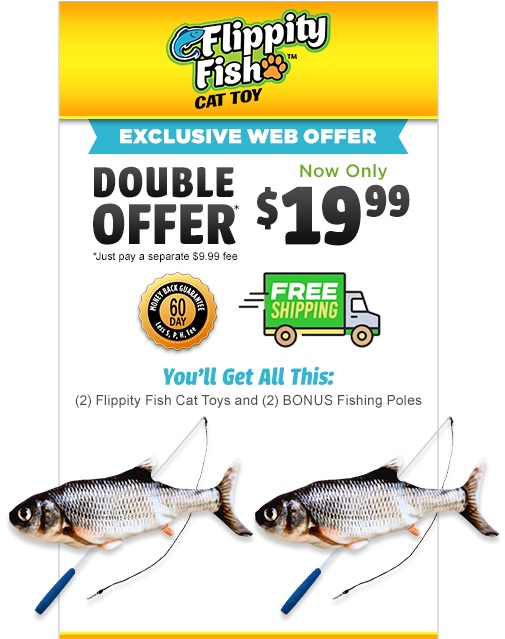 Flippity Fish Web Offer
