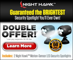 Night Hawk Set of Spotlights