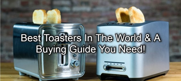 Best Toasters In The World & A Buying Guide You Need