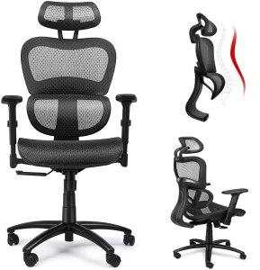 Ergousit Ergonomic Chair