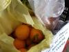 frutta-e-verdura-domenico-bilancio_12