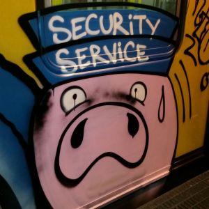 """Napoli, graffiti contro le guardie particolari giurate sul treno della metropolitana. Il presidente Alviti: """"Punizione esemplare per i colpevoli"""""""