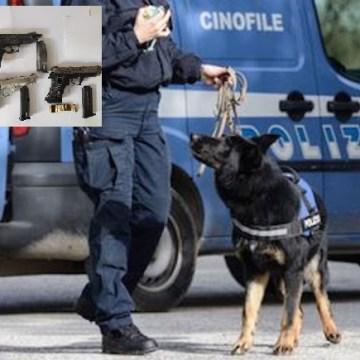 Napoli, il cane poliziotto Luke fiuta 4 pistole. Polizia arresta 30enne