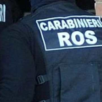 Clan dei Casalesi: ai domiciliari due imprenditori in odore di camorra