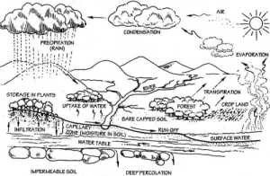 Hydrologic Cycle Diagram Black And White