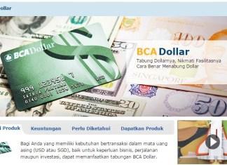 rekening tabungan bank bca dollar