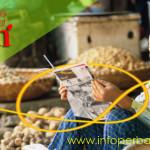 Pinjam Uang Melalui Paket Mitra Usaha Bebas Bank BTPN