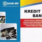 Ajukan Pinjaman Uang di Bank BRI dengan Jaminan SK PNS