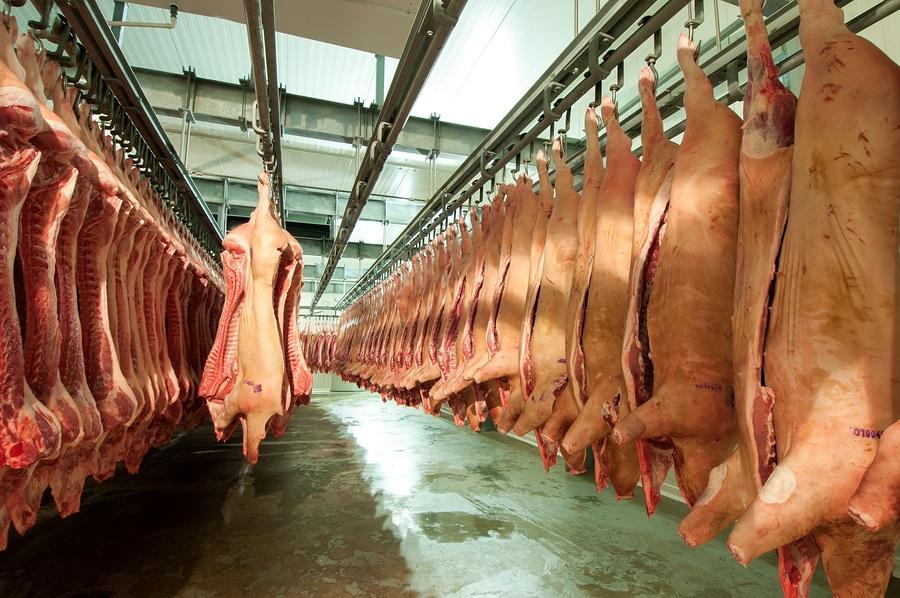 Resultado de imagem para images of big meat