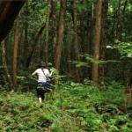 რატომ იზიდავს თვითმკვლელებს ტყე – იაპონელმა მამაკაცმა 600 თვითმკვლელი გადაარჩინა