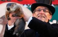 Primăvară timpurie in USA, prezisă de marmota Phil