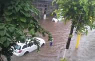 Cod portocaliu de ploi la Constanța