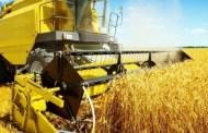 Fermierii îşi vor primi în avans subvenţiile pentru agricultură