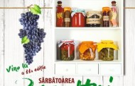 Program. Sărbătoarea Recoltei și a Vinului Dobrogean