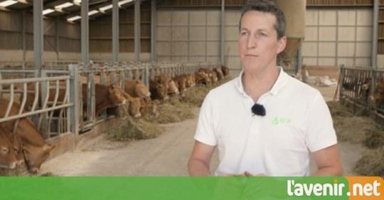 La classe verte virtuelle à la ferme Louvigny à Libramont