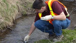 Surface Water Quality Testing