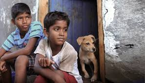Vignesh and Ramesh in Tamil Movie Kaka Muttai